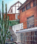 cactus and houses