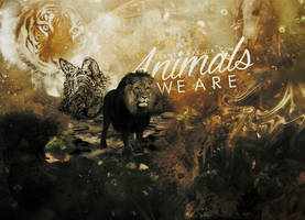 We are animals // 5000 segundos by ICantScape