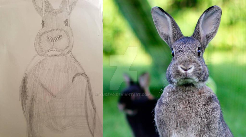 Big Rabbit! by YuKey0