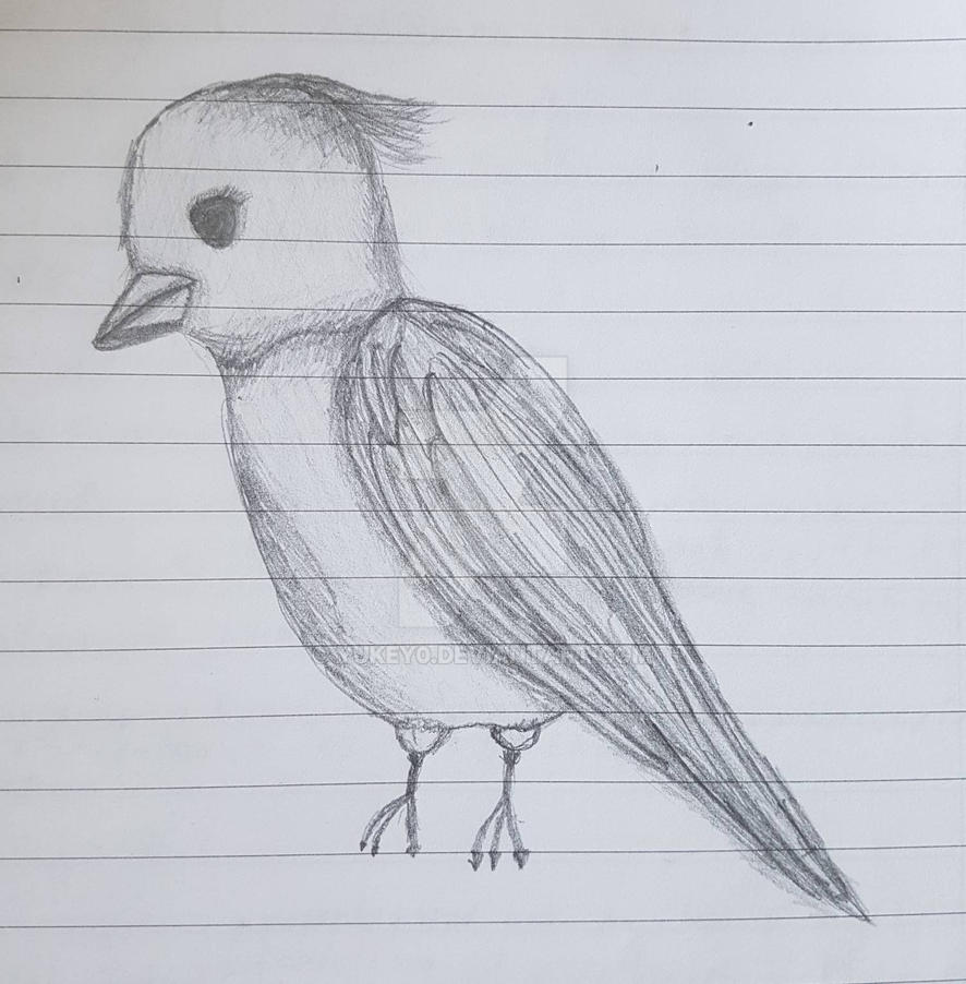Simple Bird Sketch by YuKey0