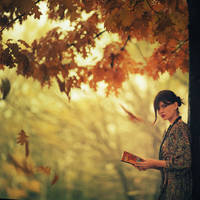 ...autumn. by oprisco