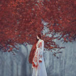 *** by oprisco