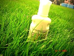 Fresh as Grass by Joanaa