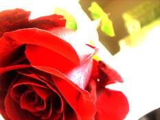 Touch My Heart by Joanaa
