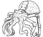 The Octospider