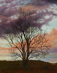 Sunrise at Flats - Painting