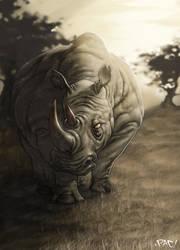 Rhino by pacman23