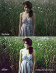 Action for Photoshop