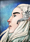 Thranduil in Winter
