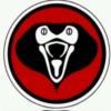 Cobra Kid by Stephue