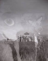 Double exposure by SydStoat