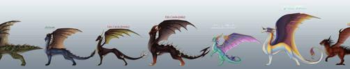 Dragon Races of Avalar by ThisCrispyKat