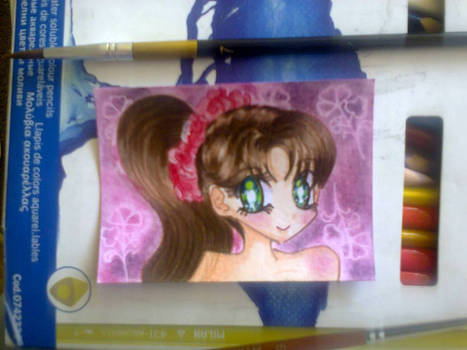 Aceo 04