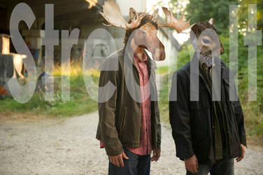 The Moose and Squirrel by StreamIt