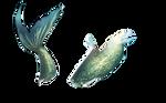 Mermaid Tail-png set