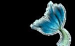 Mermaid Tail-png 4