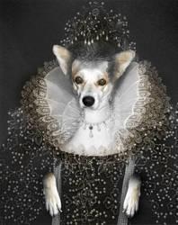 Medieval Dog SuperJA - 03 by Manon-Ghiurco