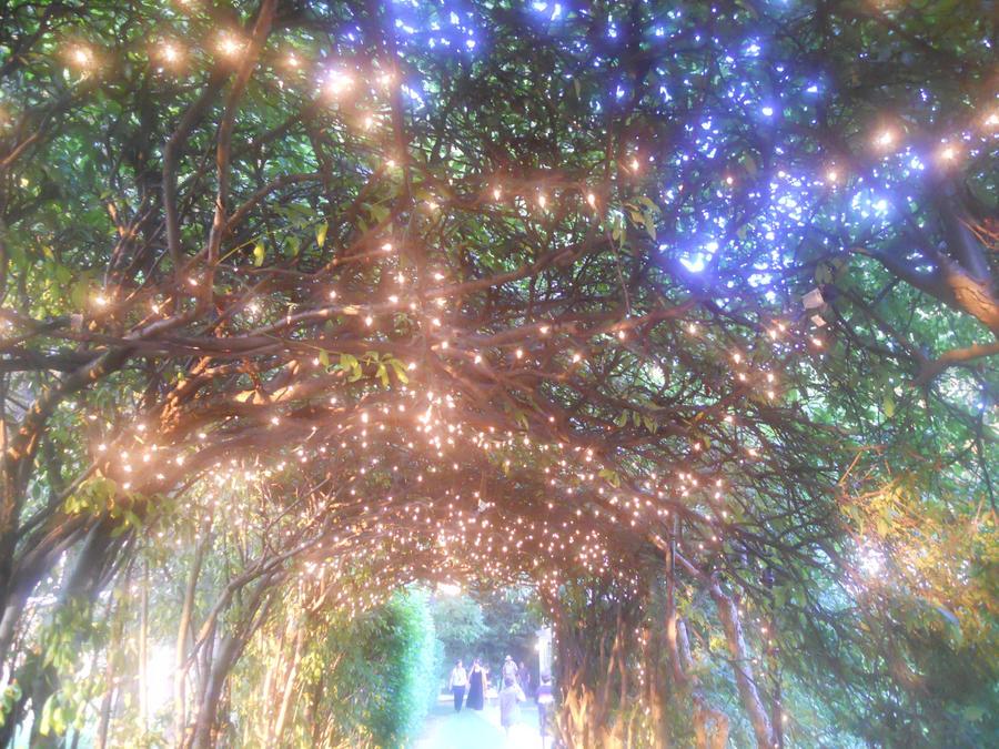 whimsical night lights by awonderlander on deviantart