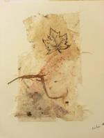 Maple Leaf Rag by CFA61