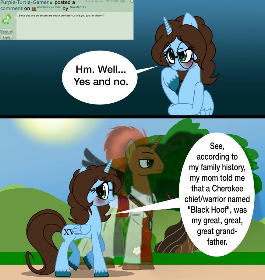Question 13- Alicorn Princess? by NoxidamXV