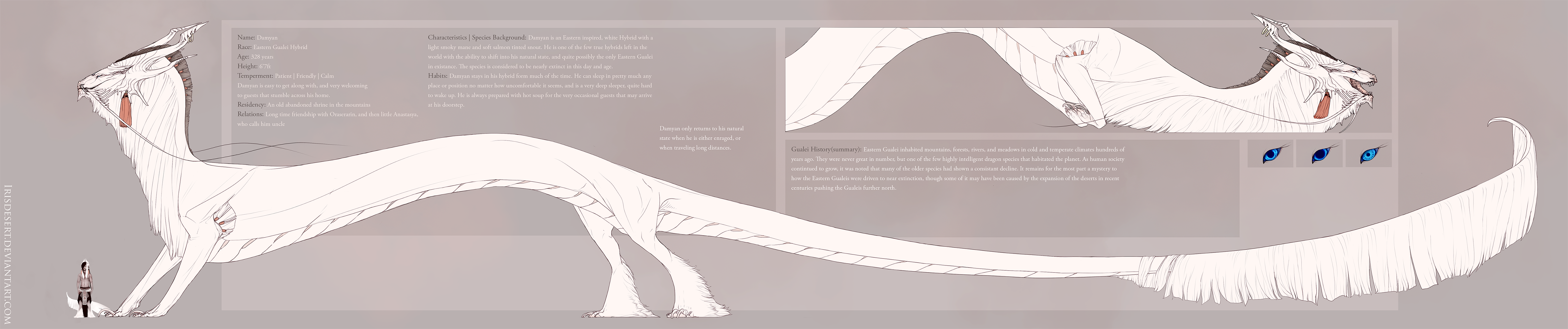 Damyan Dragon Ref by IrisDesert
