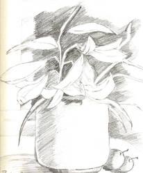 Pottery by toshina