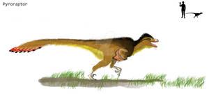 Taliesin the Pyroraptor
