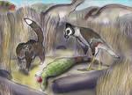 Native JP Wildlife 1-the Caracara and the Tayra