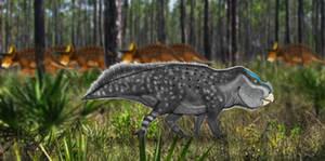 PALEOART: Solitary Leptoceratops
