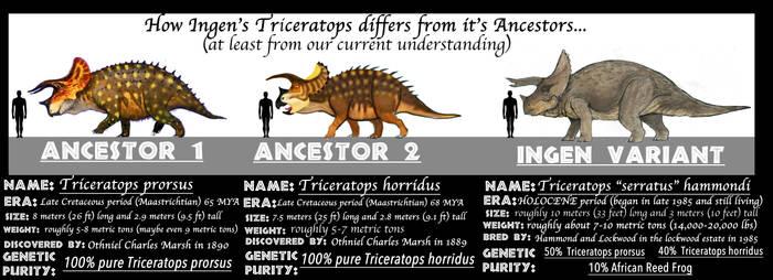 ASSETS MEET ANCESTORS- TRICERATOPS