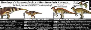 ASSETS MEET ANCESTORS- PARASAUROLOPHUS (update)