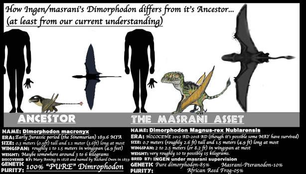 ASSETS MEET ANCESTORS- DIMORPHODON