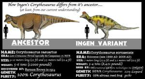 ASSETS MEET ANCESTORS- CORYTHOSAURUS