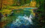 study mountain forest lake