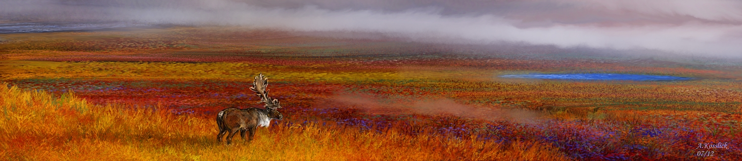 alaska tundra colors attempt 1 by andrekosslick