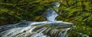 mountain creek attempt XI