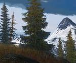 attempt alaska grizzly mountains
