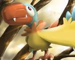 Pokemon: Aaken 'Japanese'