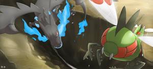 Pokemon Sky Battle: Mega Charizard X vs Yanmega by mark331