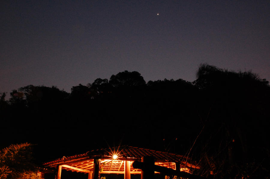 Estrela do Oriente by chilorastaroots