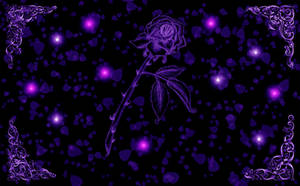 Purple Passion Rose Wallpaper by silverperfume