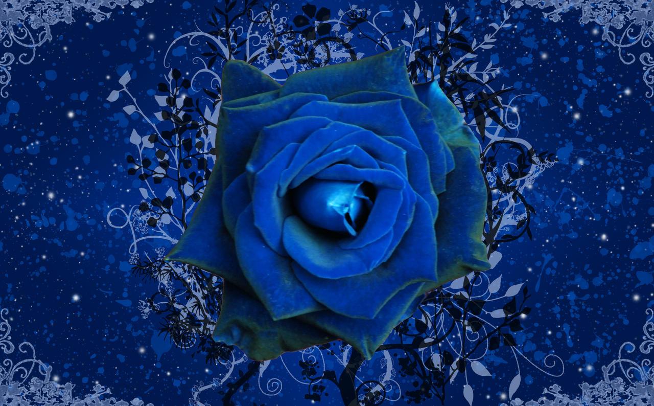 blue rose garden wallpaper by silverperfume on deviantart