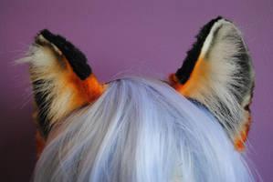 tiger ears by baarakka