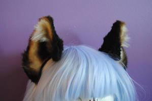 brown cat ears by baarakka