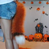 red fox tail by baarakka