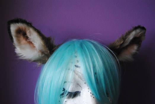 doe/fawn ears