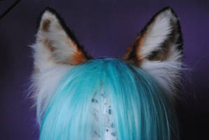 red fox ears by baarakka
