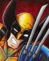 Wolverine Painting by ninjatron
