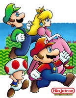 Super Mario Bros. 2 by ninjatron