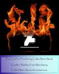 Fire Precut by CelticStrm-Stock